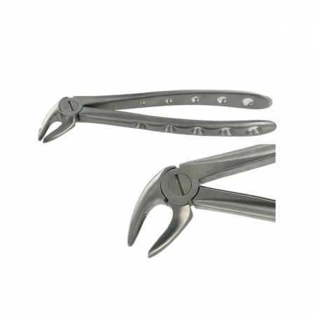 ENGLISH FORCEPS 4 LOWER INCISOR