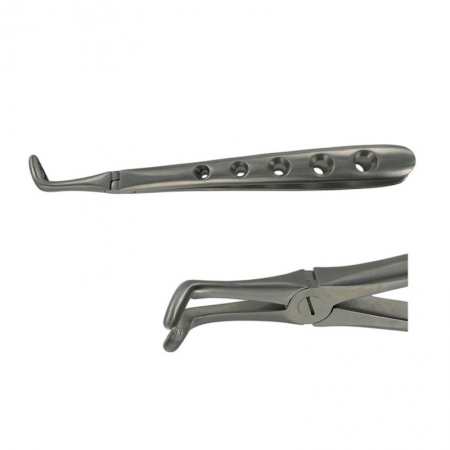 ENGLISH FORCEPS 45 LOWER ROOT