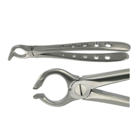 ENGLISH FORCEPS 68 LOWER ROOT