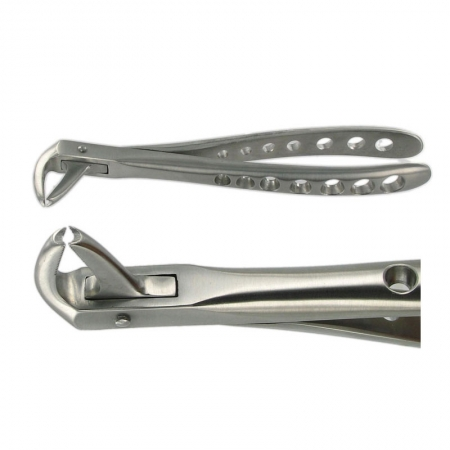 ENGLISH FORCEPS 169 LOWER CANINE