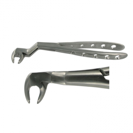 ENGLISH FORCEPS 22 1/2R LOWER WISDOM